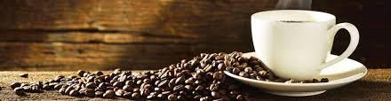 Rgs water & coffee caffè macchine per caffè depuratori acqua a