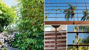 Small Picture Going Super Vertical How to Build a Copper Pipe Trellis Without