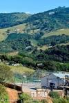 imagem de Pedralva Minas Gerais n-19