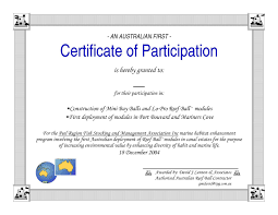 Template For Certificate Of Participation Training Certificate