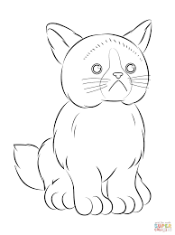 Small Picture Webkinz Grumpy Cat coloring page Free Printable Coloring Pages