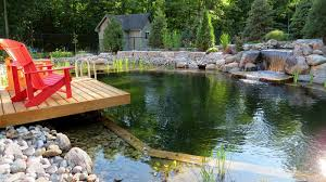 natural looking in ground pools. Natural Swimming Pools Are That Use Plants And Other Biofilters  Instead Of Chemicals To Keep The Water Clean. The Trend, Which Started In Europe Natural Looking Ground