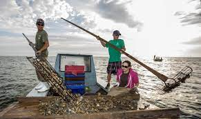 Florida shuts down bay known nationally for its oysters - The San Diego  Union-Tribune