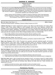 Resume Service Resumes Professional Services Toronto Nj Rapid