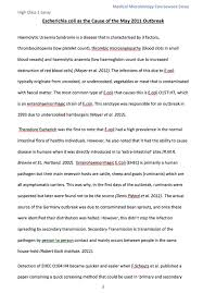 example of a university essay co example essays skills hub university of sussex