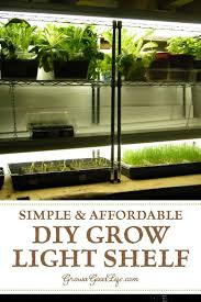 When To Sow Seeds Indoors Chart Build A Grow Light System For Starting Seeds Indoors