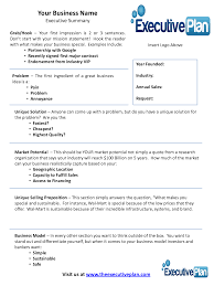 Executive Summary Layout Examples Of An Executive Summary Executive Summary Template For 10