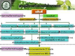 PPT - บรรยายแนะนำกรมส่งเสริมการเกษตร PowerPoint Presentation - ID:5979299