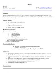 examples of resumes simple resume format doc for teachers 87 marvelous job resume format examples of resumes