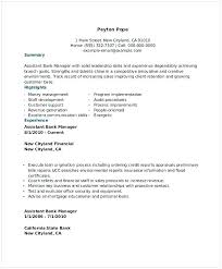 Assistant Portfolio Manager Resume Resume Retail Manager Assistant
