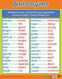 Antonyms Literacy School Poster