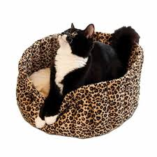 COZY CAT SLEEPING CUP WITH WASHABLE COVER