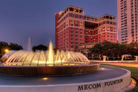 museum district homes for in the inner loop of houston texas lion real estate group