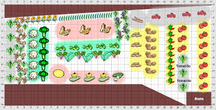 Small Picture Planning the Vegetable Garden One Green Generation