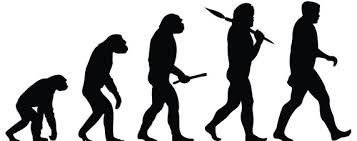 evolution and creativity why humans triumphed wsj humans why they triumphed
