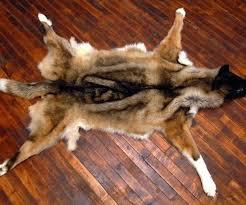 brown tip wolf faux fur rugs