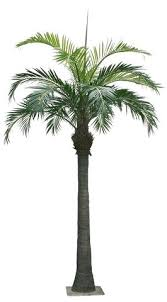 outdoor palm trees large metal tree home artificial coconut hardy uk