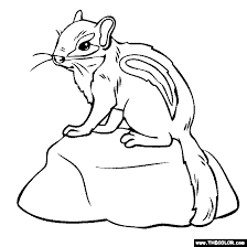Baby Chipmunk Coloring Page
