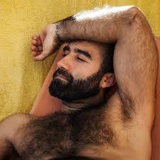 Gay hairy man picture