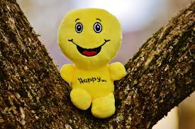 free images sweet cute love green yellow smile laugh start cheerful happy happiness courage funny plush emotion positive beginning