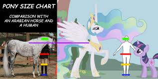 Horse Size Comparison Chart 709974 4chan Comic Sans Comparison Height Hoers Horse