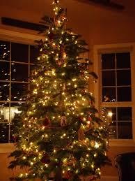 christmas tree lighting ideas. Home Design : Christmas Tree Light Ideas Photo Album Amazows Within 85 Appealing Outdoor Lighting