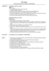 Travel Resume Examples Corporate Travel Agent Resume Samples Velvet Jobs 18