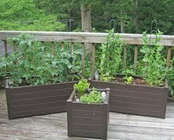 Small Picture Garden Design Garden Design with Deck Garden Year My Northern