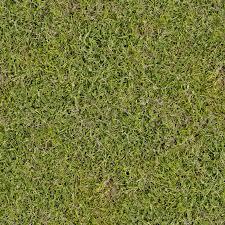 seamless grass texture game. Grass Clover Mix Texture Seamless Game F
