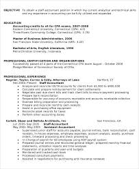 Professional Resume Format for Accountant