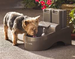 dog outdoor water fountain toy designs