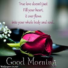 Good Morning My Love Quotes Simple Goodmorningmylovequotesinspanish Short And Long Quotes