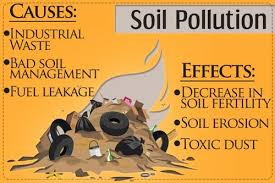 prevention of soil pollution soil erosion in points prevention of soil pollution