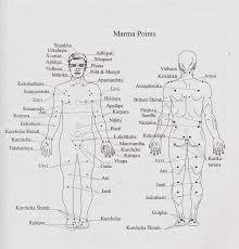 Marma Chart Mantra Purusha The Marriage Of Mantra And Marma Therapy
