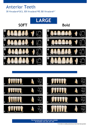 Ivoclar Denture Teeth Mould Chart 2019