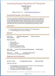 Examples Of Personal Statements For Cv Teaching Personal Statement Cv Palliative Care Essay