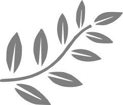 tree branch with leaves vector. tree, branch, leaves, oil, promise, spring, plant tree branch with leaves vector i