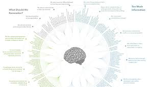 Bias Chart Every Single Cognitive Bias In One Infographic