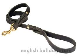 Petco Dog Collar Size Chart How Much Does Dog Training At Petco Cost How Much For Dog