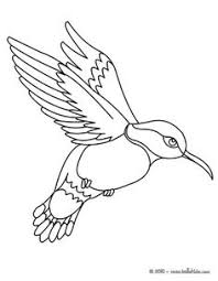Small Picture Image result for hummingbird cartoon Beadwork Pinterest