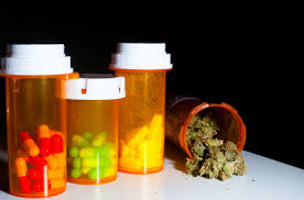 can visitors with cal prescriptions use in florida
