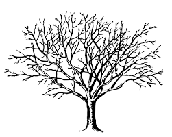bare apple tree clipart. tree black and white bare clipart free apple
