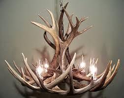real antler chandelier whitetail mule deer combo 12 antlers 4 lights