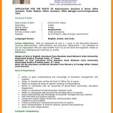 Best Resume Sample For It Professionals Save Standard Cv Format ...