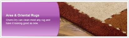 area oriental rugs cleaning