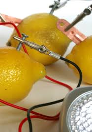 Proyecto De Ciencias How To Make A Lemon Battery Proyectos De Ciencia