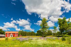 land loans washington state. Beautiful State U201cI Am Very Happy That I Had The Chance To Work With Farm Loan Center They  Made Our Hobby Purchase Transaction Easy And Were  For Land Loans Washington State I