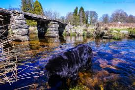 on the trail of sherlock holmes in dartmoor mallory on travel pretty devon bridge on the edge of dartmoor baskerville country of arthur conan doyle on