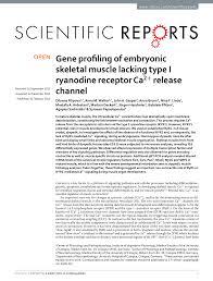 2 02 Skeletal Muscle Chart Pdf Gene Profiling Of Embryonic Skeletal Muscle Lacking