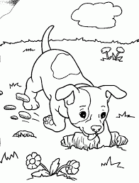 Small Picture Free Printable Preschool Coloring Pages Project Awesome Free